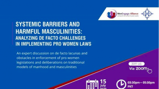 Systemic Barriers and Harmful Masculinities : Analyzing De Facto Challenges in Implementing Pro-Women Laws